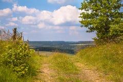 Идя след на холме в зеленом ландшафте лета Стоковые Изображения RF