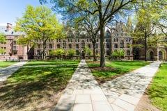 Йельский университет в New Haven Коннектикуте Стоковое фото RF