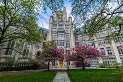 Йельский университет в New Haven Коннектикуте Стоковое Изображение RF