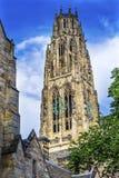 Йельский университет New Haven Коннектикут кампуса башни Harkness старый Стоковые Изображения RF