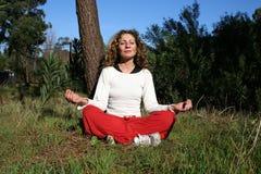 Йога в природе стоковые изображения
