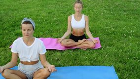 Йога людей практикуя на траве в парке Размышлять девушек, сидя в представлении лотоса outdoors на заходе солнца сток-видео