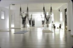 Йога мухы Стоковая Фотография