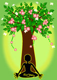 Йога под деревом Стоковая Фотография RF