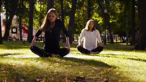 йога Привлекательная женщина 2 делая exersices йоги в парке акции видеоматериалы