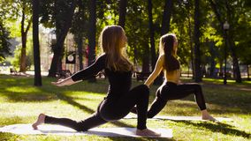 йога Привлекательная женщина 2 делая exersices йоги в парке видеоматериал