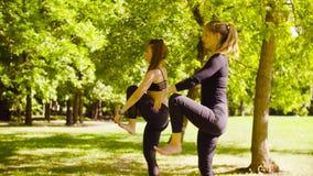 йога Привлекательная женщина 2 делая exersices йоги в парке сток-видео