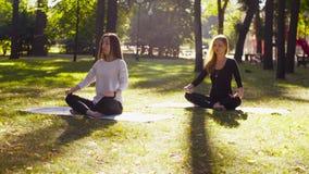 йога Привлекательная женщина 2 размышляя в парке сток-видео