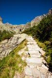 Йога работая в горах Tatry Стоковое Изображение RF