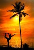 йога силуэта представления natarajasana танцора Стоковые Изображения