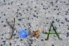 Йога слова написанная с естественными материалами Стоковая Фотография