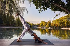 йога темы спорта съемки парка кобры напольная Стоковые Изображения RF