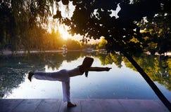 йога темы спорта съемки парка кобры напольная Стоковые Изображения
