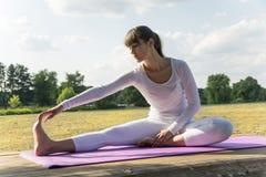 йога темы спорта съемки парка кобры напольная Стоковые Фотографии RF