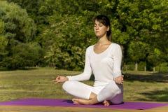 йога темы спорта съемки парка кобры напольная Стоковое Изображение