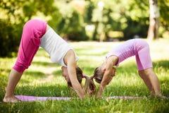 йога темы спорта съемки парка кобры напольная Стоковая Фотография RF