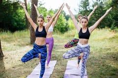 Йога, фитнес, спорт, и здоровая концепция образа жизни - группа людей в представлении дерева на циновку outdoors в парке Стоковые Изображения