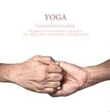 йога mudra ganesha Стоковая Фотография RF