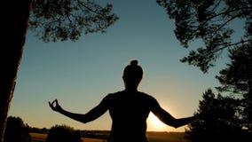 Йога Sporty женщины практикуя в парке на заходе солнца стоковое изображение rf