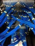 Кабели компьютерной сети в пульте временных соединительных кабелей UTP Стоковое фото RF