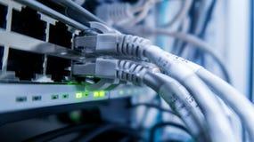 кабели подключили переключатель сети к Эпицентр деятельности сети Стоковая Фотография RF