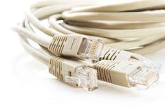 кабельная сеть Стоковая Фотография RF