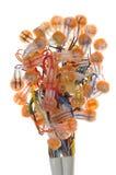 кабельное соединение быстрое Стоковое Изображение RF