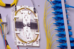 кабельное соединение оптическое Стоковые Фото