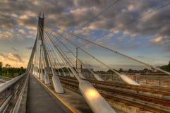кабель моста стоковая фотография rf