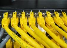 Кабели локальных сетей RJ45 подключены к переключателю интернета Стоковая Фотография
