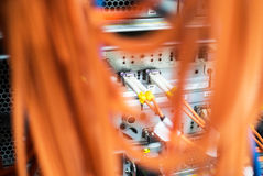 Кабельная сеть оптического волокна другое Способный получать - tra Стоковая Фотография