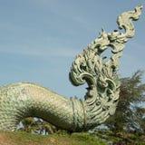 Кабель змея Стоковое Фото