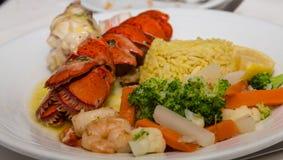 Кабель омара с овощами и рисом креветки Стоковые Изображения RF