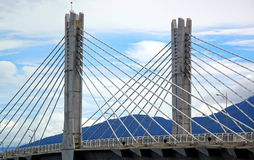 Кабель остался мостом с 2 опорами Стоковое Фото