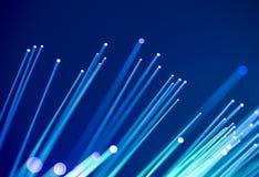 Кабель сети волокна оптически Стоковое фото RF