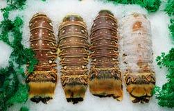 4 кабеля омара Стоковые Изображения RF