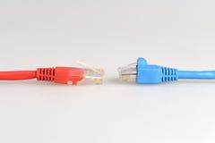 2 кабеля сетевого компьютера напротив одина другого Стоковая Фотография