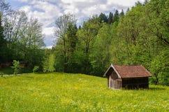 Кабина в Альпах Стоковое Фото