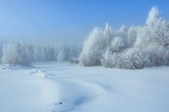 Кабина в древесинах зимы Стоковая Фотография
