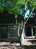 Кабина в древесинах Стоковые Фотографии RF