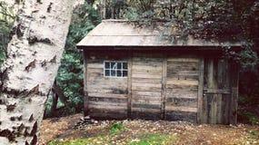 Кабина в древесинах Стоковые Изображения