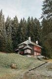 Кабина в coniferous лесе Стоковые Фотографии RF