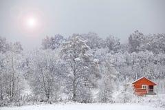 Кабина зимы среди покрытых Снег деревьев стоковое изображение