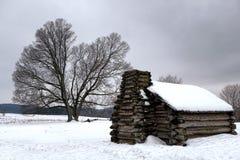 Кабина и старое дерево на национальном парке кузницы долины Стоковое Изображение RF