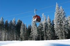 Кабина кабел-крана на предпосылке покрытых снег елей на a стоковая фотография rf