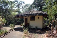 Кабина роскошной гостиницы в джунглях Стоковые Фотографии RF