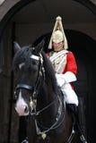 кавалерия королевская Стоковое фото RF