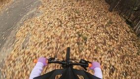 Кавказские езды детей одного велосипед дорога в парке осени Цикл катания маленькой девочки черный оранжевый в ребенк леса идет сд сток-видео