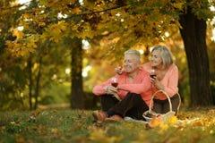 Кавказские пожилые пары Стоковая Фотография