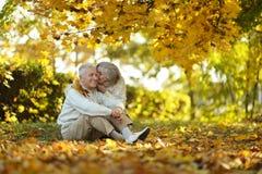 Кавказские пожилые пары Стоковые Фото